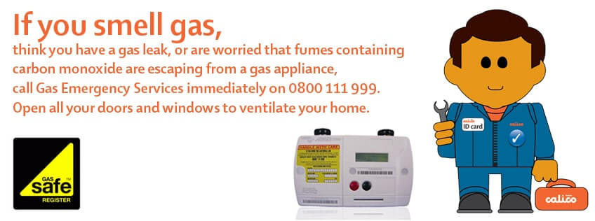 Is Your Home Gas Safe?